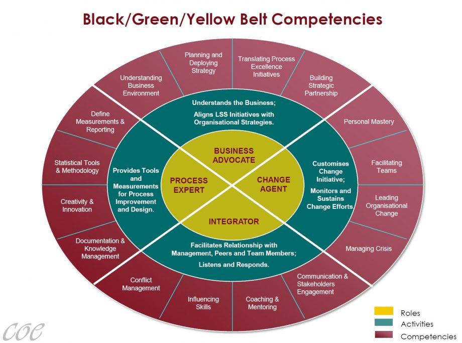 Set of Belt Competencies